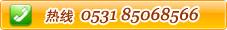 0531-85068566